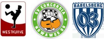 13-10-11_fahrradkorso_steve_logos