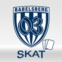 170314_beitrag_skat_logo